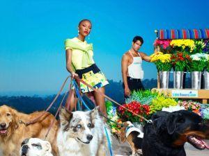 Фотосессия с собаками и цветами топ-модель по-американски