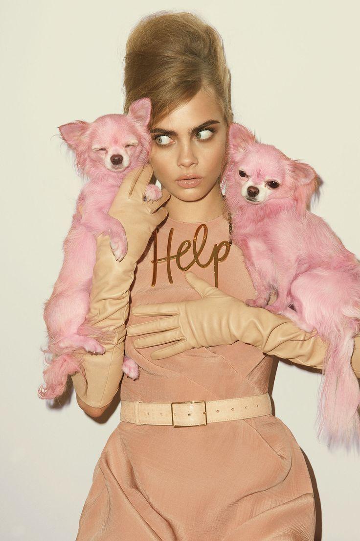 Кара Делевинь с розовыми собаками